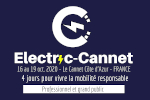 Electric Cannet - Editions HF